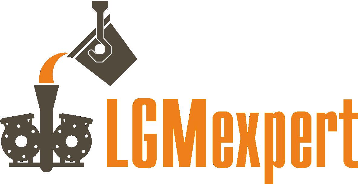 LGMexpert